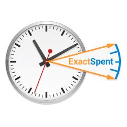 ExactSpent logo